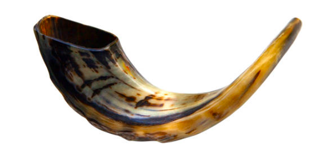 Shofar - It's Elul!