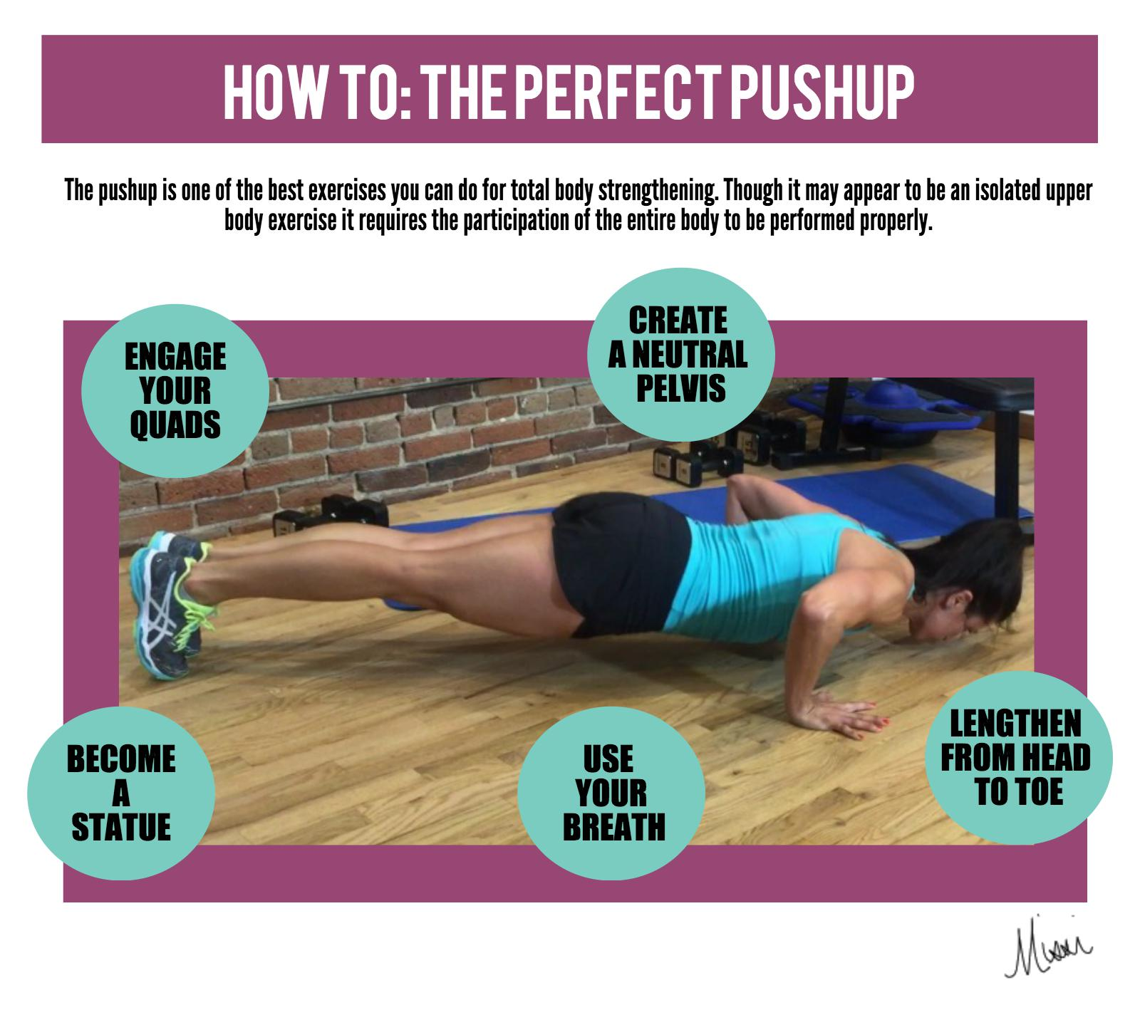 Perfect pushup infographic